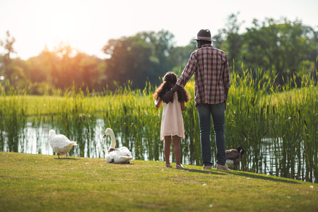 rear view of african american granddaughter and her grandfather standing on pond with birds Banque d'images - 102355642