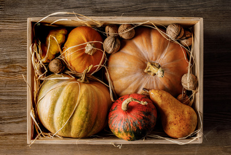 top view of pumpkins and walnuts in wooden box on table
