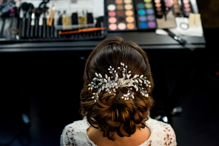 back view of woman with elegant hairstyle and accessory in beauty studio Фото со стока