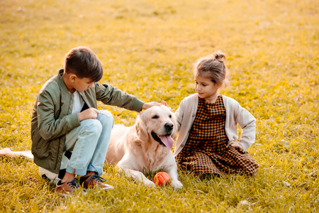 Two little siblings petting a dog and sitting on grass in park