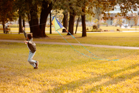 Little boy running across a grassy lawn in park with a kite