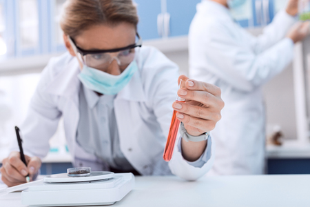 Professional scientist in white coat examining test tube while making experiment in chemical lab