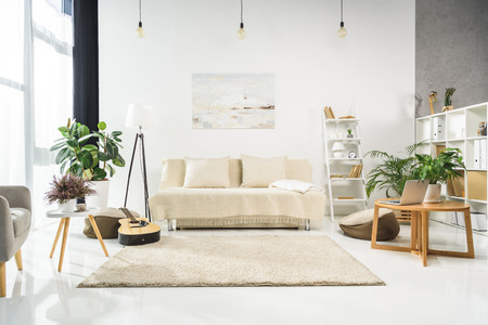 Minimalistic living room interior with white furniture and plants, lit by bright sunlight Stockfoto