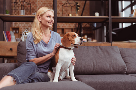 attractive blonde woman looking away while sitting with beagle dog on sofa