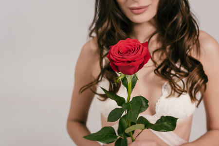 cropped shot of sexy girl in lace bralette holding red rose flower isolated on grey
