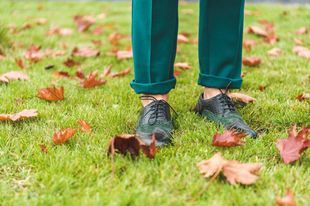 cropped view of female legs in green pants and brogue shoes standing on lawn with autumn foliage  Stock Photo