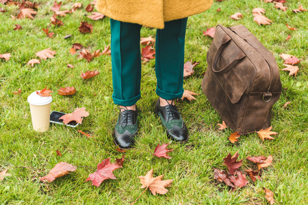 low section of elegant woman standing on lawn with autumn foliage and leather bag, coffee to go and smartphone