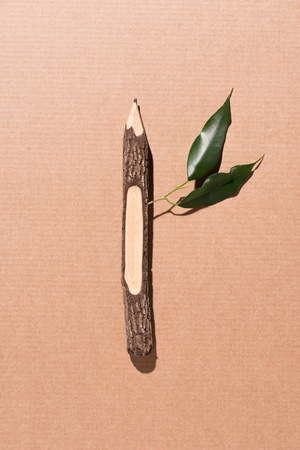 top view of wooden pencil with green leaves on beige Stock Photo