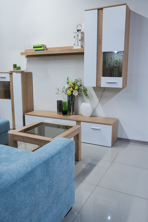 modern living room interior with closet and shelves