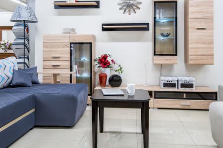 cozy modern living room interior with furniture Zdjęcie Seryjne