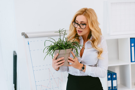 businesswoman holding flowerpot with green plant Stock Photo