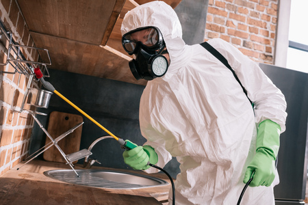 pest control worker spraying pesticides on metal shelves in kitchen Stock Photo