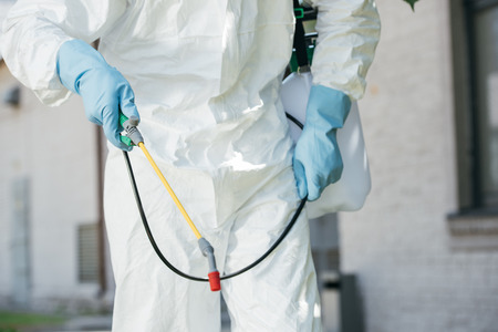 cropped image of pest control worker holding sprayer