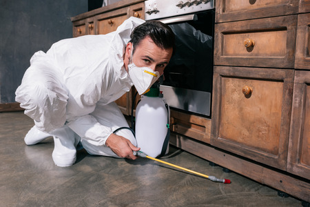 pest control worker spraying pesticides on floor in kitchen and looking at camera