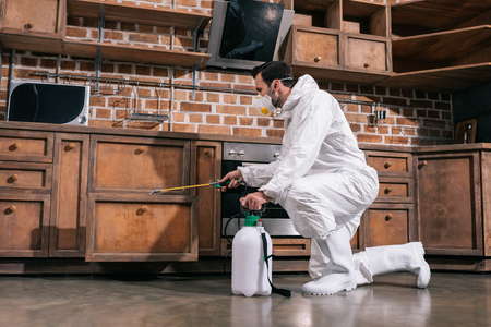 pest control worker spraying pesticides in cabinet in kitchen Stock Photo