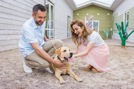 smiling couple palming labrador dog at animals shelter and choosing for adoption