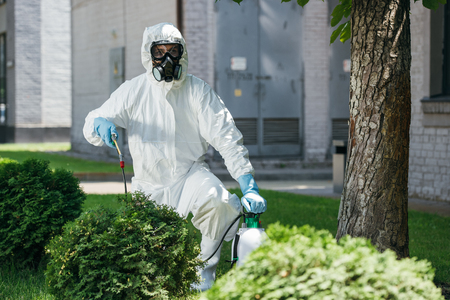 pest control worker in uniform spraying chemicals on bush