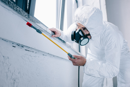 pest control worker spraying pesticides under windowsill at home Stock Photo - 105583803