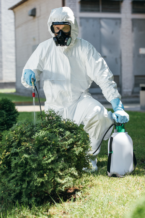 pest control worker in uniform spraying pesticides on bush 版權商用圖片