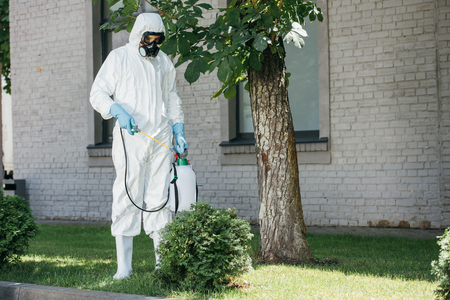 pest control worker spraying pesticides on bush Stock Photo