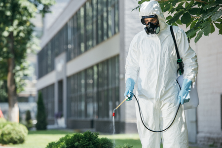 pest control worker in uniform and respirator spraying pesticides on street with sprayer