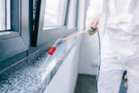 Image recadrée d'un travailleur antiparasitaire pulvérisant des pesticides sur le rebord de la fenêtre à la maison