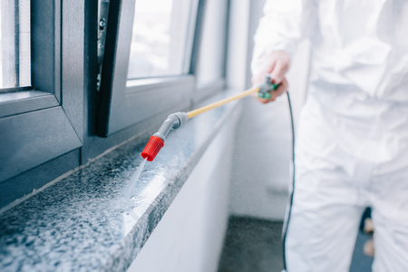 Imagen recortada del trabajador de control de plagas rociando pesticidas en el alféizar de la ventana en casa