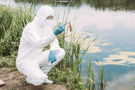 male scientist in protective suit and mask holding fish by tweezers near river Stockfoto