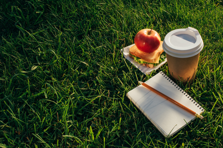 close up view of coffee to go, sandwich, apple and notebook on green grass