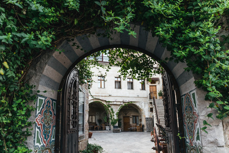 decorative arch with open gates and green leaves in historical cappadocia, turkey