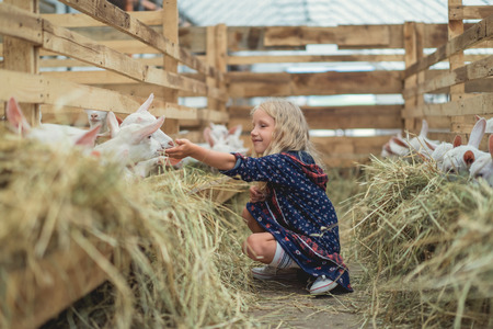 side view of smiling kid sitting on ground in barn and touching goats