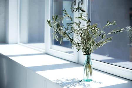 Flasche mit Olivenzweigen auf Fensterbank mit Schatten