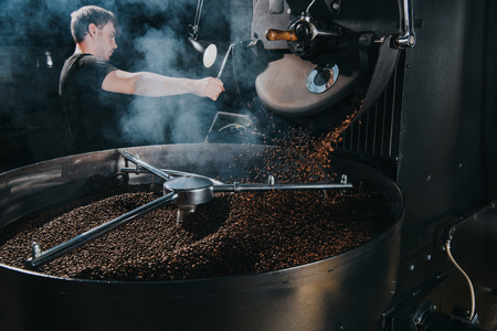 Professional male roaster loading container of steaming machine with coffee beans Stockfoto