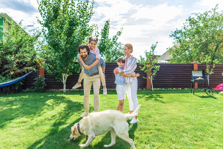 cheerful family with labrador dog spending time together on backyard on summer day Stok Fotoğraf
