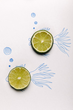 top view of lime slices on fishes drawing on white Фото со стока