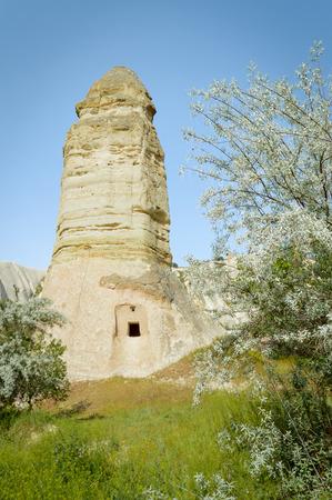 front view of trees and fairy chimney under blue sky, Cappadocia, Turkey 版權商用圖片 - 105825847
