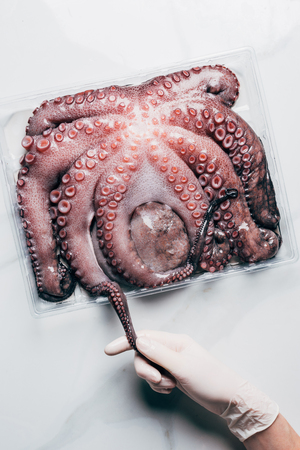 top view of hand with big raw octopus in plastic container on light marble surface