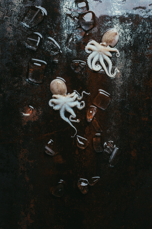 top view of small uncooked octopuses with ice cubes on rusty metal surface