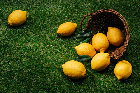 close up image of lemons with leaves and wicker basket on green lawn