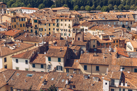 aerial view of ancient roofs of Pisa city, Italy