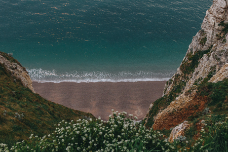 high angle view of beautiful beach with flowers on cliff on foreground, Etretat, France Banque d'images - 105954820