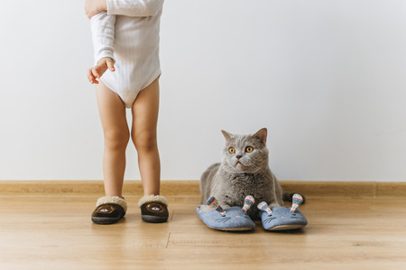 cropped shot of little boy and grey british shorthair cat in sleepers at home Standard-Bild - 105955409