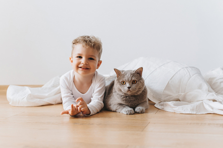 smiling toddler boy and grey british shorthair cat lying on floor together at home Banco de Imagens