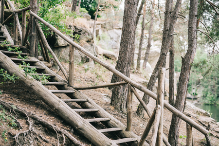 scenic shot of wooden staircase in calm forest 写真素材