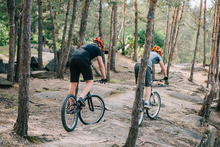 rear view of male extreme cyclists in protective helmets riding on mountain bicycles in forest