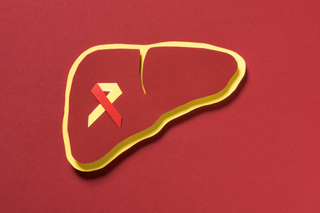 top view of liver with ribbon on red background, world hepatitis day concept