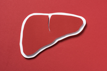 top view of liver on red background, healthcare concept