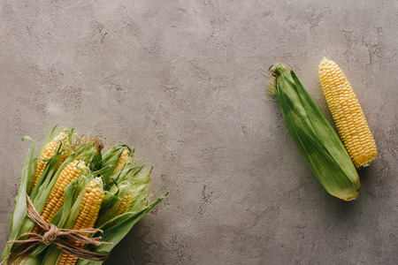 top view of fresh corn cobs tied with rope and one corn apart on grey concrete surface Stock Photo