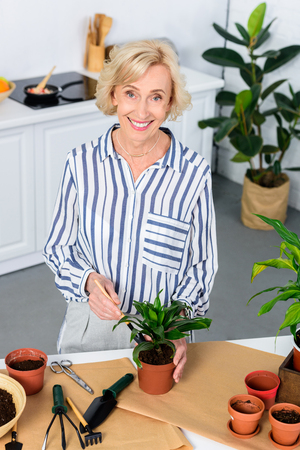 high angle view of happy senior woman cultivating houseplant and smiling at camera