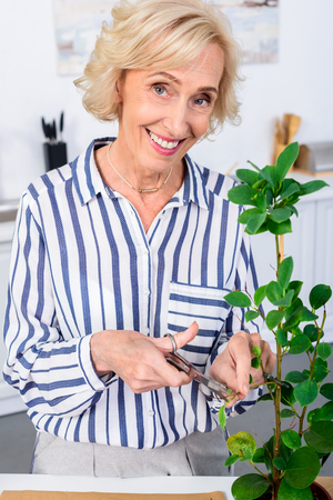 happy senior woman cutting houseplant with scissors and smiling at camera